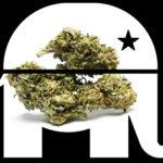 Medical Marijuana in a red state.