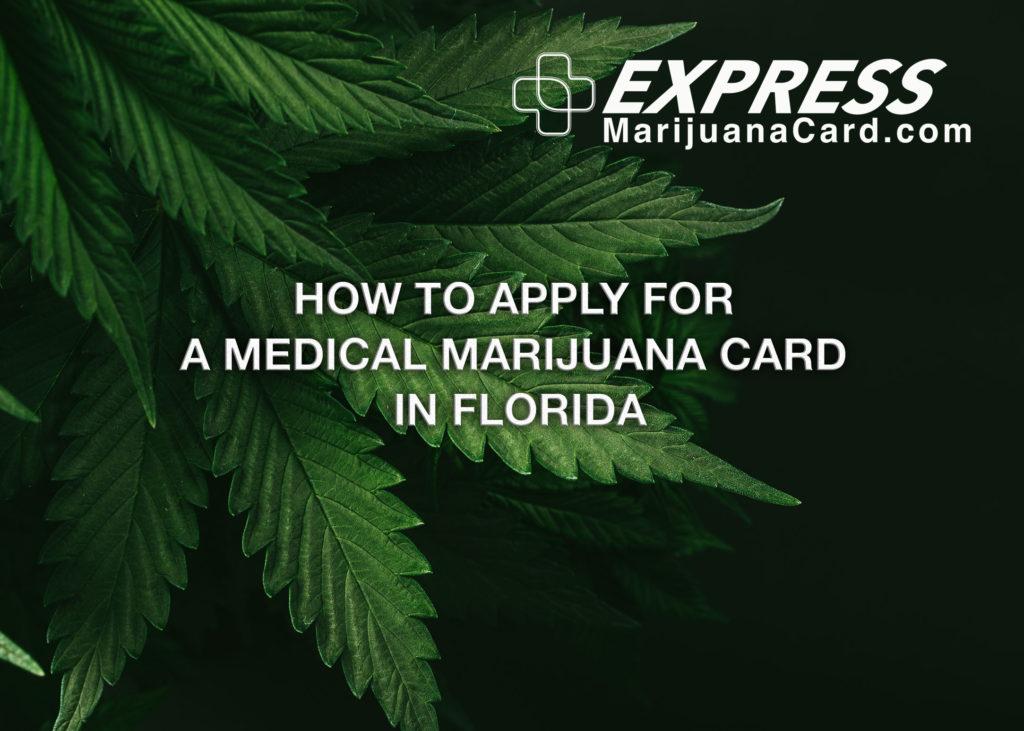 Image of subdued green marijuana leaves on black background with Express Marijuana Card logo in white
