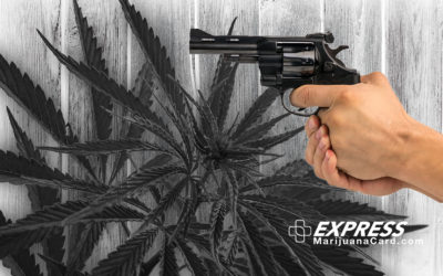 Medical Marijuana & Your Conceal Carry Permit for a Firearm