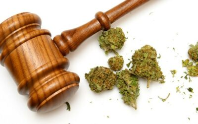 A Brief Overview of Marijuana Laws in The United States