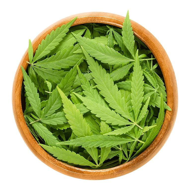 How to Consume Medical Marijuana
